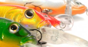Top 10 Crankbait Design Elements For Tackle Makers