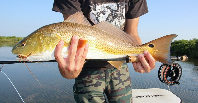 4 Tips for Building a Better Saltwater Fly Rod